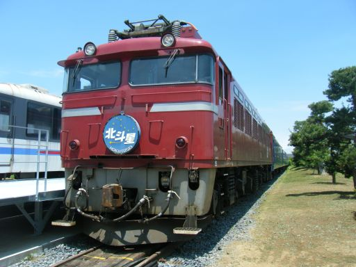 Dscf8596_512